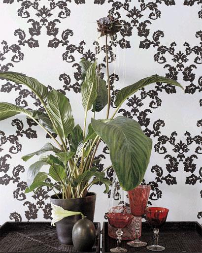 zimmerpflanzen wohnideen dekoration pflanzen. Black Bedroom Furniture Sets. Home Design Ideas