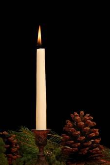 sch ner weihnachtsbaum aber bitte jedes jahr. Black Bedroom Furniture Sets. Home Design Ideas