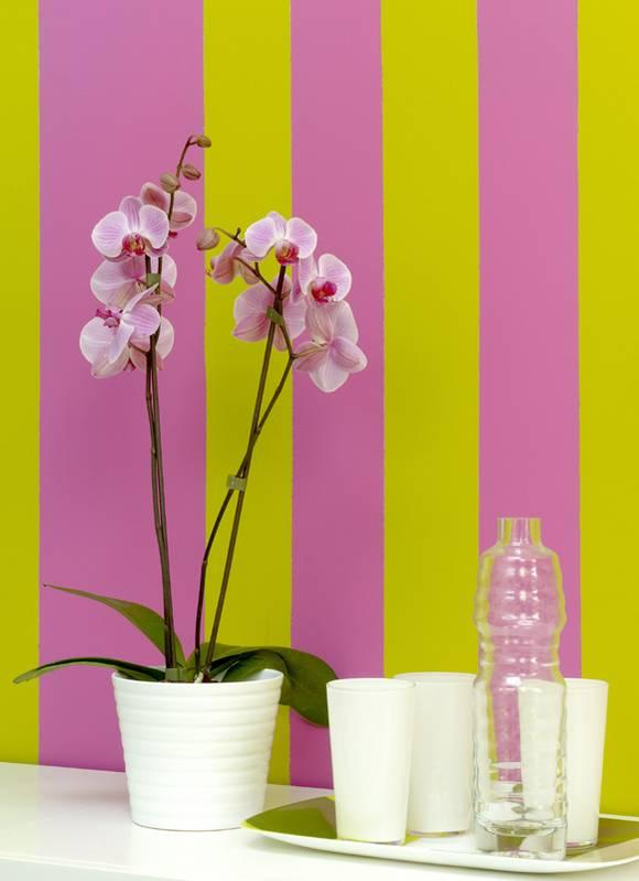Farbgestaltung pink galerie for Farbwirkung raumgestaltung
