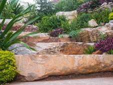 Wie gestaltet man den Steingarten?