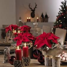 Tischdekoration Fur Weihnachten