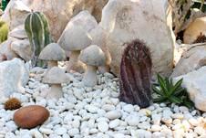 Wie Dekoriert Man Einen Steingarten