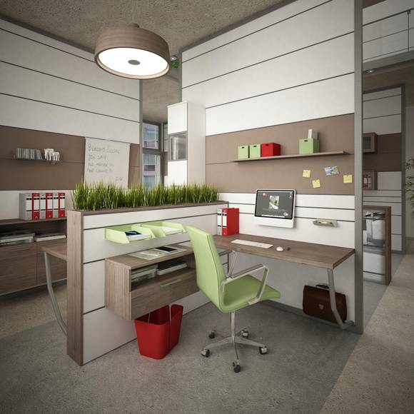 36 schnittblumen und zimmerpflanzen. Black Bedroom Furniture Sets. Home Design Ideas