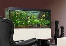 licht f r die unterwasserwelt. Black Bedroom Furniture Sets. Home Design Ideas