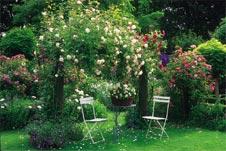 kleine g rten gestalten mehr raum mit blumenampeln heckenpflanzen. Black Bedroom Furniture Sets. Home Design Ideas