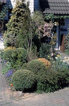 Auffallend oder praktisch - Zimmerpflanzen gestaltungsideen ...