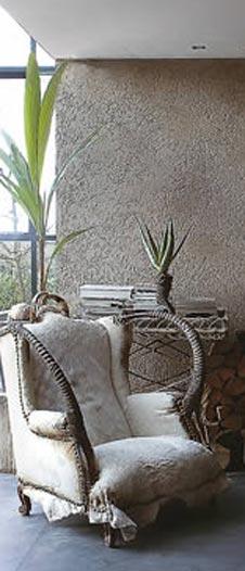 tipps fur die pflege von kokospalmen fur ein sudseefeeling With whirlpool garten mit bonsai fertilizer jwh 018