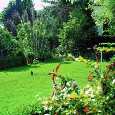 sprinklersystem und micro drip system von gardena f r den. Black Bedroom Furniture Sets. Home Design Ideas